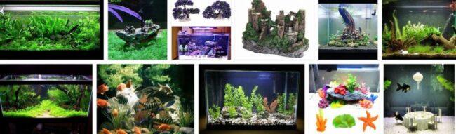 Aquarium Decorations 2021 General Use Furniture